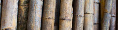 Ambiente Bambu
